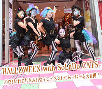 HALLOWEEN with SoLaDo CATS